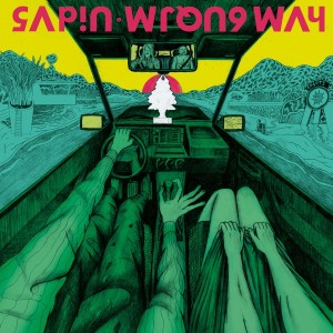 sapin-wrong-way