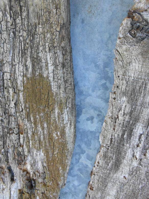 Yann Arthus Bertrand sans hélicoptère